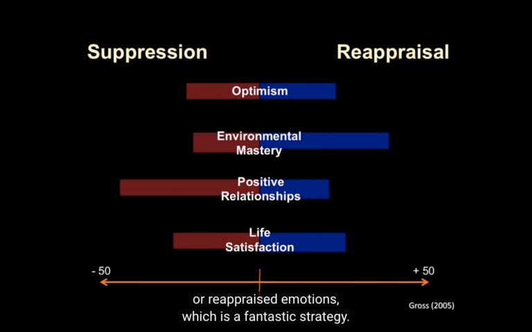 Emotional Reappraisal Zoom-Out (David Rock)